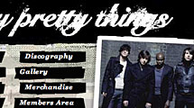 Dirty Pretty Things Band