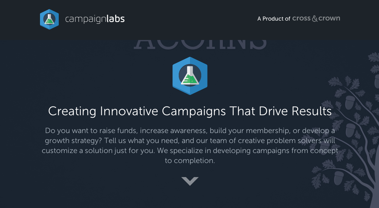 Campaign Labs